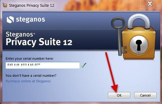 Steganos security suite 11.